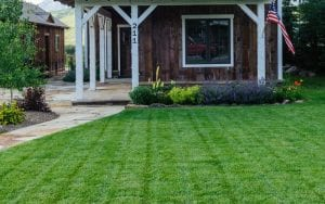 perfect_lawn_sod_install_maintenance