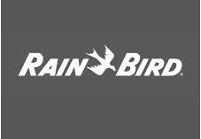 rain-bird bw