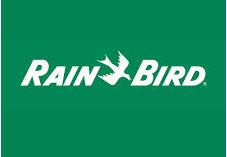 rain-bird